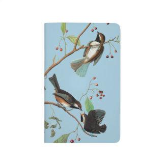 Audubon: Chickadee Taschennotizbuch