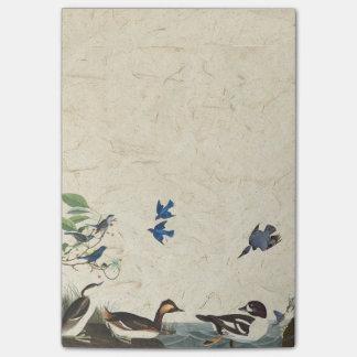 Audubon Collage der Vogel-Tier-Post-Itanmerkungen Post-it Klebezettel
