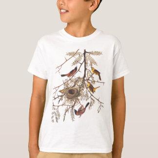 Audubons Obstgarten-Oriole-Vogel im T-Shirt
