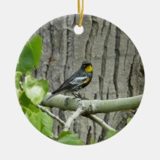 Audubons Trällerer-Vogel-Fotografie Keramik Ornament