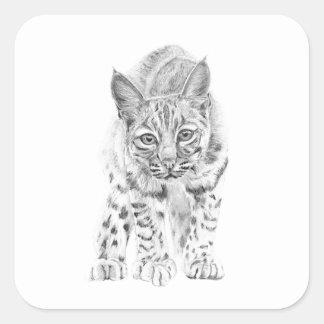 Auf dem Prowl ein junger Rotluchs Quadratischer Aufkleber