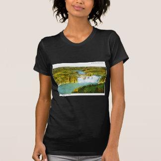 Auf der alten Oregeon Spur Shoeshone Fälle, Idaho T-Shirt