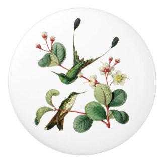 Aufgeladener Schläger-Schwanz-Kolibri Keramikknauf