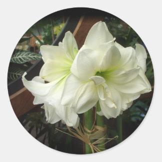 Aufkleber der weißen Lilie
