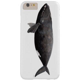 Aufrichtiger Wal von Atlantik Barely There iPhone 6 Plus Hülle