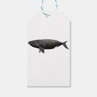 Aufrichtiger Wal von Atlantik Geschenkanhänger