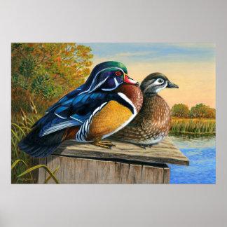 Aufstellungs-Haus - hölzerne Enten - Poster