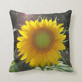 Aufstiegs-und Glanz-Honig! Sonnenblume-Jahreszeit Kissen