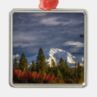 Aufwachen Quadratisches Silberfarbenes Ornament
