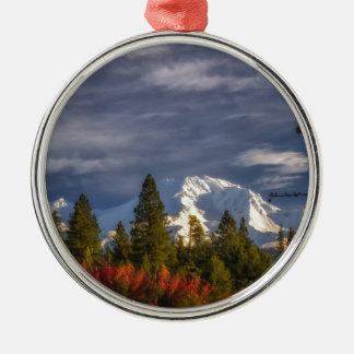 Aufwachen Rundes Silberfarbenes Ornament