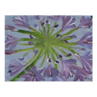 AugustAgapanthus Postkarte