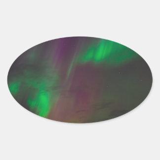 Aurora Borealis Nordlicht-Baum-Natur-Länder Ovaler Aufkleber