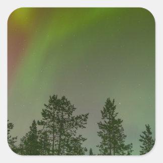 Aurora Borealis Nordlicht-Himmel-Glühen-Schein Quadratischer Aufkleber