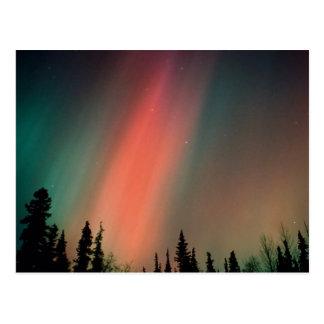 Aurora Borealis, Nordlichter, Alaska Postkarte