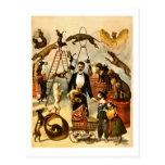 Ausgebildetes Zirkus-Taten-Plakat der