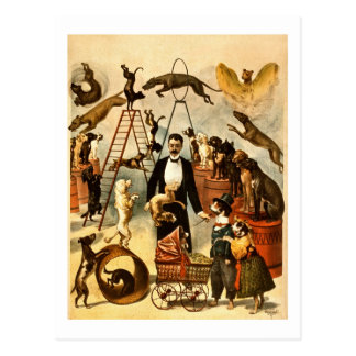 Ausgebildetes Zirkus-Taten-Plakat der Postkarte