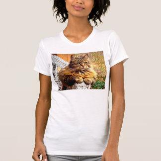 Ausgezeichneter Maine-Waschbär-T - Shirt