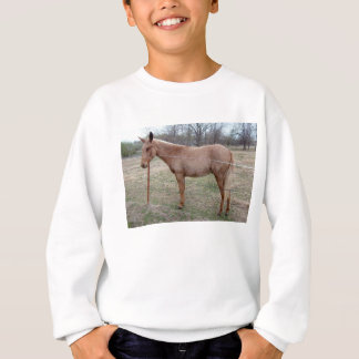 Ausgezeichnetes Maultier! Sweatshirt