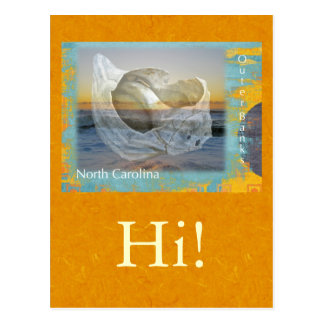 Äußerer Bank-North Carolina-Seashell u. Brandung Postkarte