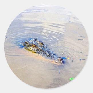 Aussie_Crocodile_Eyes, _ Runder Aufkleber