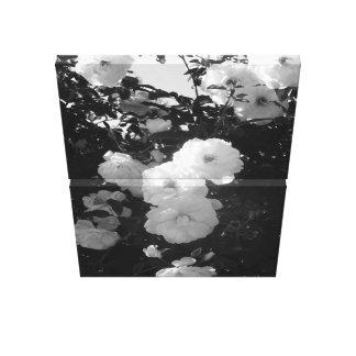 Ausstellungs-Park-Rosen-Garten Leinwanddruck