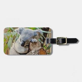 Australien-Koala-Bärn-Schlaf Koffer Anhänger