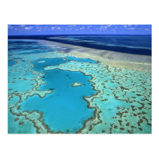 Australien - Queensland - Great Barrier Reef. 7 Postkarte