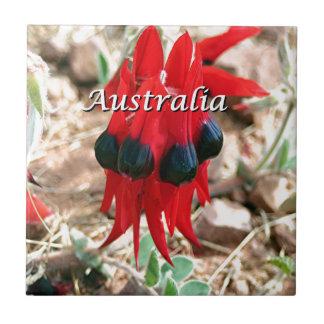 Australien: Sturts Wüstenerbsen-Blume Fliese