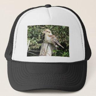 Australier Kookaburra (Eisvogel-Familie) Truckerkappe
