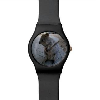 Australier Quokka, Damen-Schwarz-Uhr Uhr