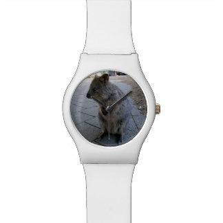 Australier Quokka, Damen-weiße Uhr