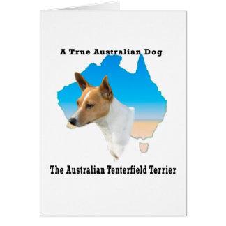 Australier Tenterfield Terrier TAN/Weiß-Karte Karte