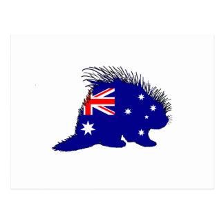 Australische Flagge - Stachelschwein Postkarte