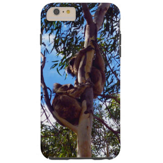 Australische Koala-Bären, die Gummi-Bäume Tough iPhone 6 Plus Hülle