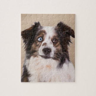 Australische Schäfer-Hundekunst Puzzle