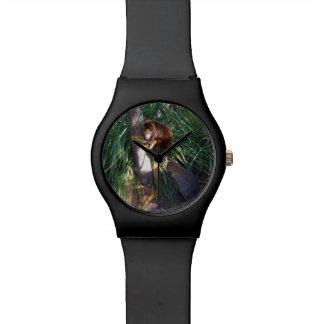 Australischer Baum-Känguru, Damen-Schwarz-Uhr Uhr