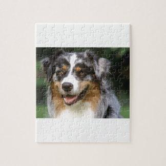 Australischer Schäfer-Hund Puzzle