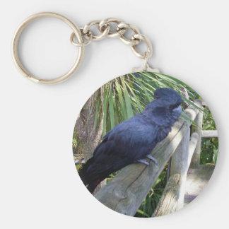 Australischer schwarzer Papagei, Schlüsselanhänger