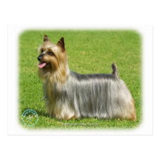 Australischer seidiges Terrier-Entwurf Postkarte