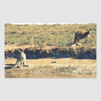 Australisches kangoroo rechteckiger aufkleber