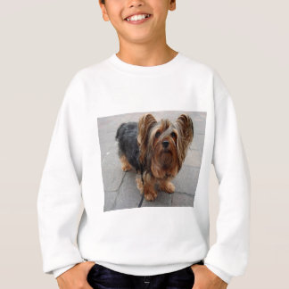 Australisches seidiges Terrier-Hündchen Sweatshirt