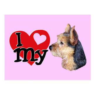 Australisches Terrier I (Herz) mein Postkarte
