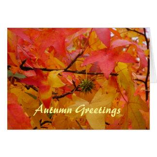 Autumn Greetings Grußkarte