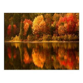 Autumn See-Postkarte Postkarte