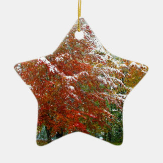 Autumn Winter.JPG Keramik Ornament