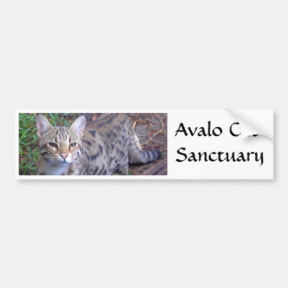 Avalo Katzen-Schongebiet Autoaufkleber