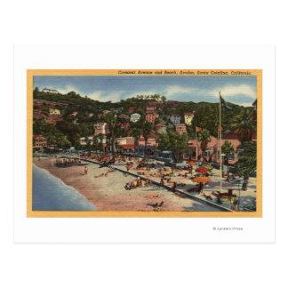 Avalon Ansicht von Halbmond-Allee. U. Strand Postkarte