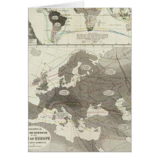 Aves, Vögel Karte