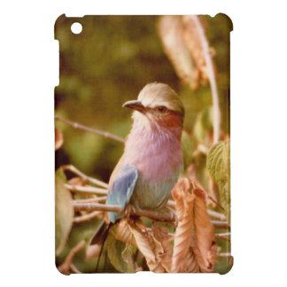 Aviary iPad Mini Hülle