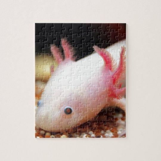 Axolotl Weißling Puzzle